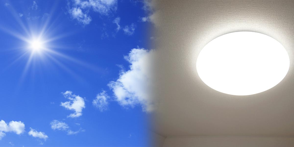 直射日光・蛍光灯